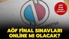 Dönemsonu (Final) Sınavları Online mı Olacak?