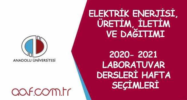 Elektrik Enerjisi Üretim, İletim ve Dağıtımı Laboratuvar Dersleri Hafta Seçimi (2021)