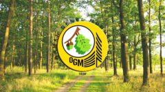 Orman Genel Müdürlüğü Türkiye Geneli Personel Alıyor