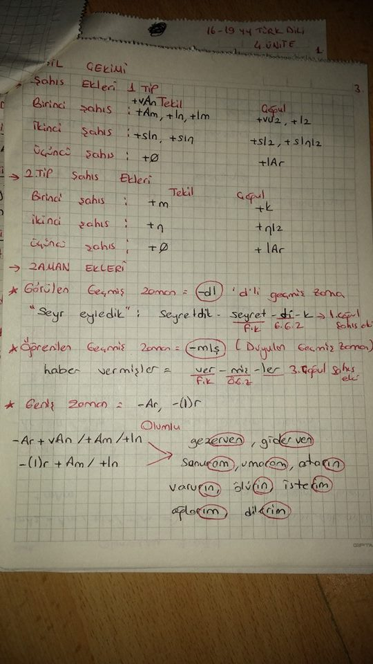 Türk Dili 1 - Dil Bilgisi Ders Notları